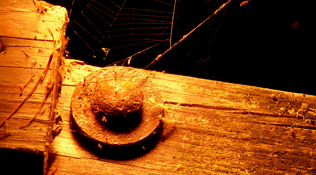 Spider's Web, Beam, & Bolt.